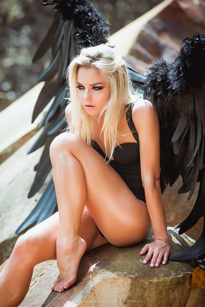 Черные крылья в аренду