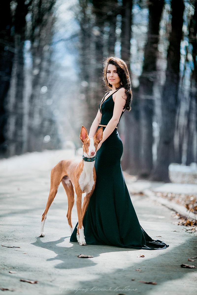Изысканная фотосессия с собакой элитной породы