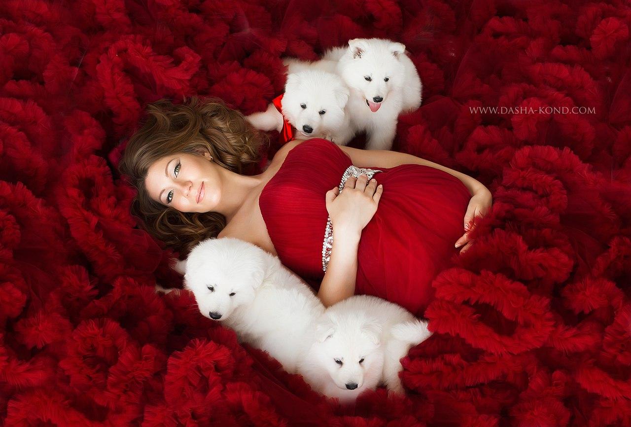 Фотосессия беременной с белыми щенками