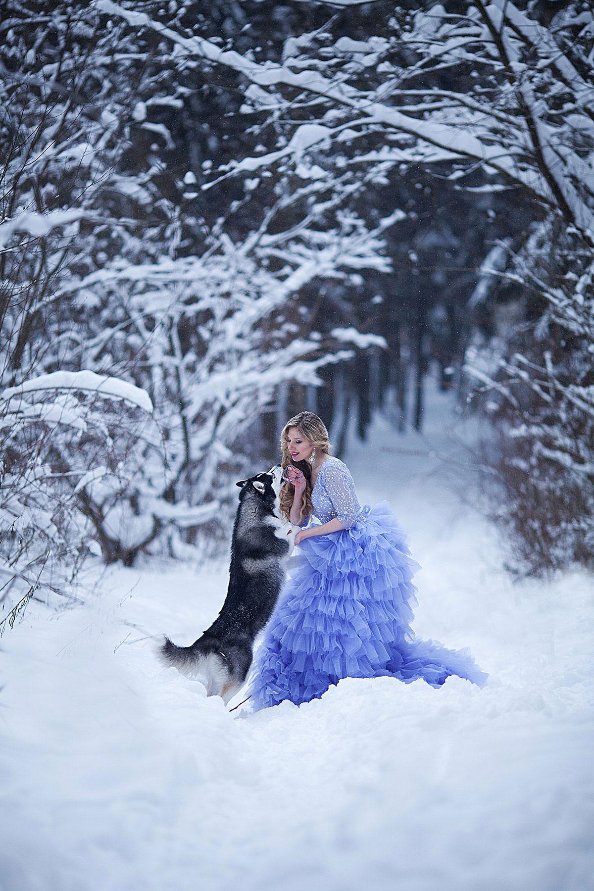 Зимняя фотосессия с хаски