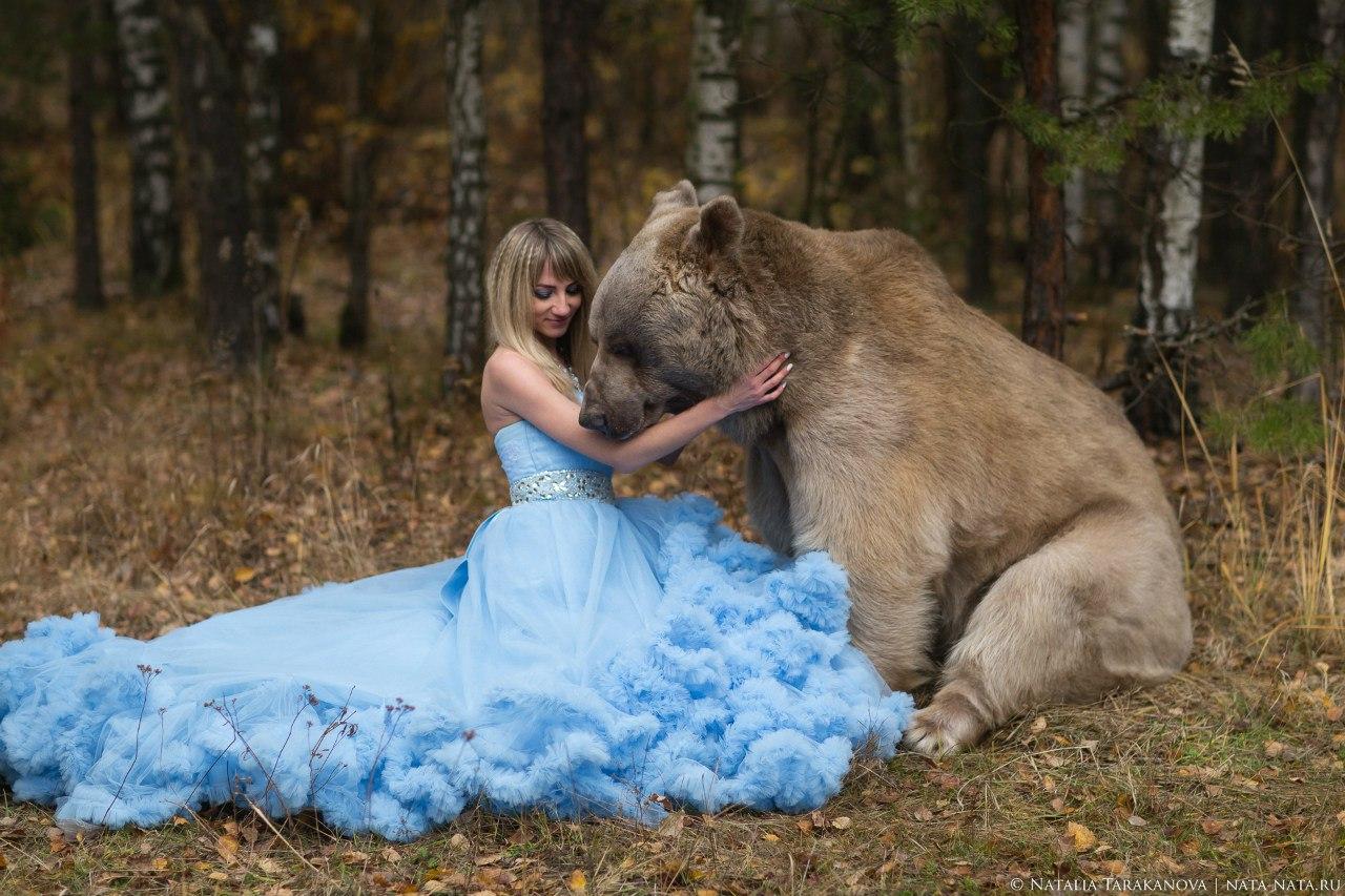 Фотосессия с медведем в голубом платье