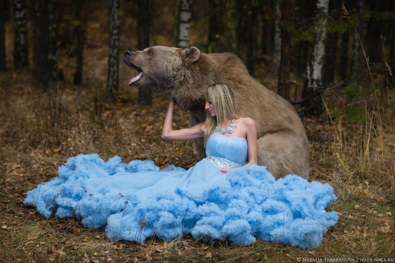 Фотосессия с живым медведем в лесу