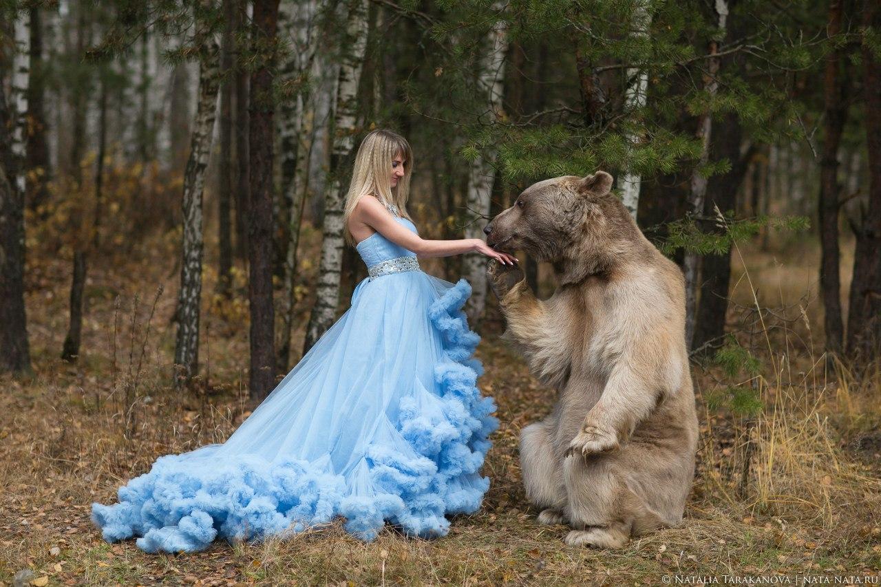 Медведь целует руку модели