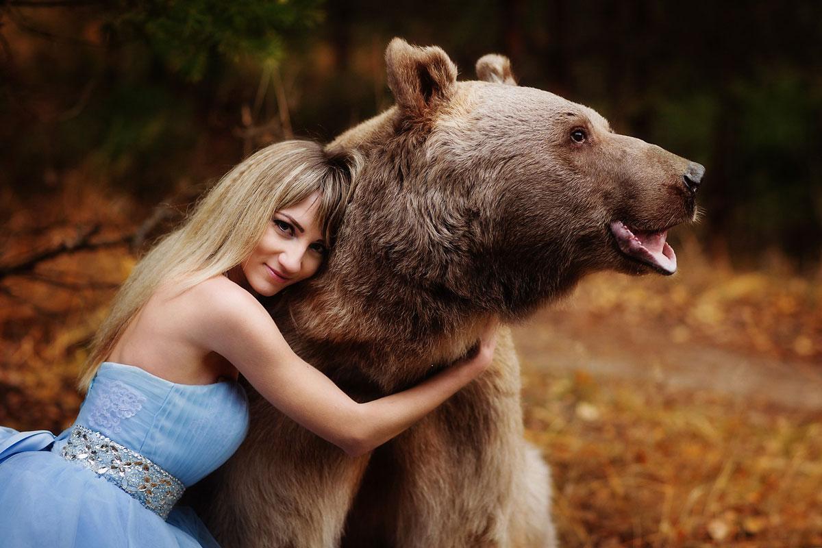 Живой медведь для фотосессии
