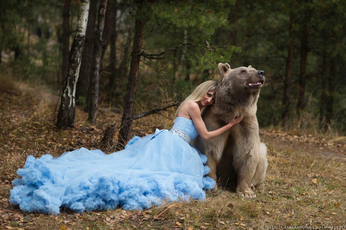Профессиональный медведь для съемок