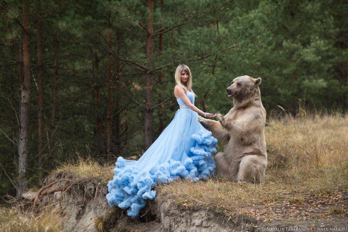 Дрессированный медведь для фотосессий