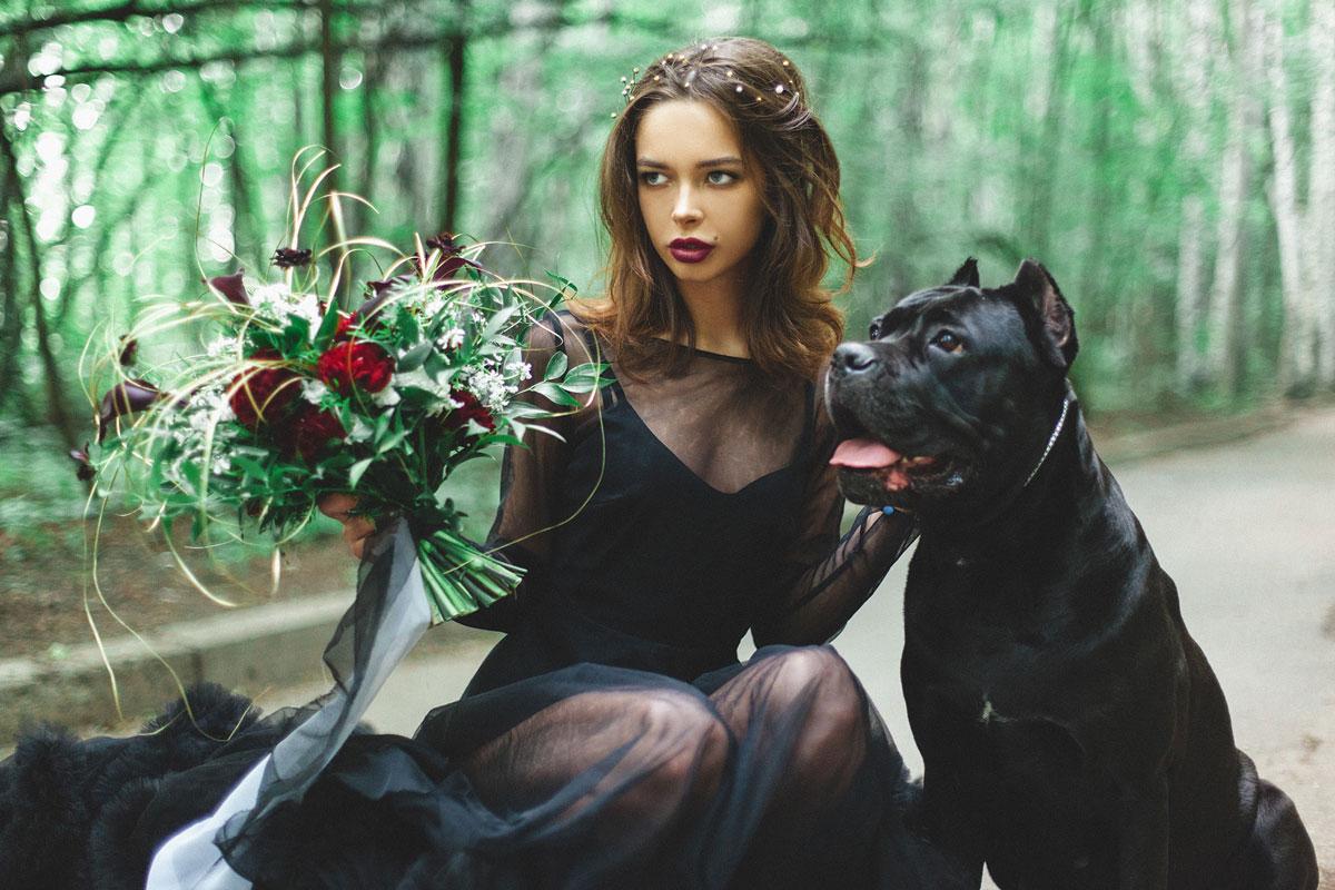 Фотосессия с черным питбулем