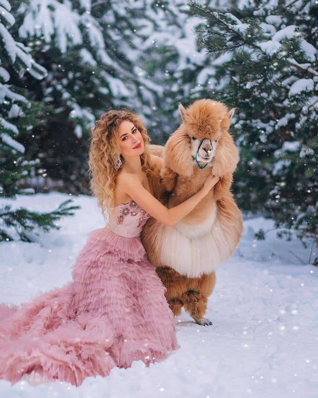 Зимняя фотосессия с альпакой