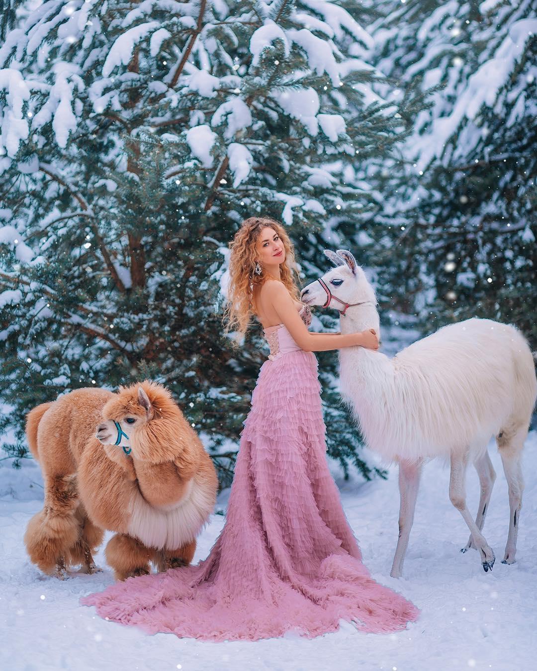 Фотосессия в платье с альпакой и ламой