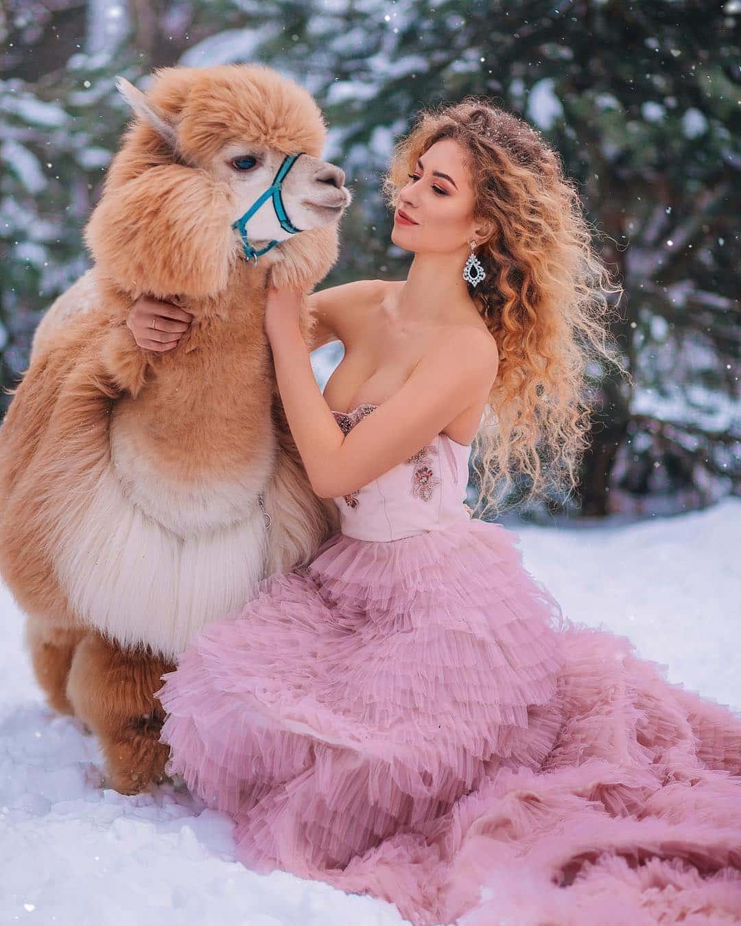 Фотосессия с альпакой в зимнем лесу